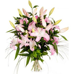 Luxury Lilies